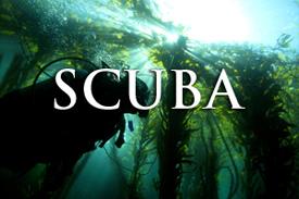 SCUBA_COVER